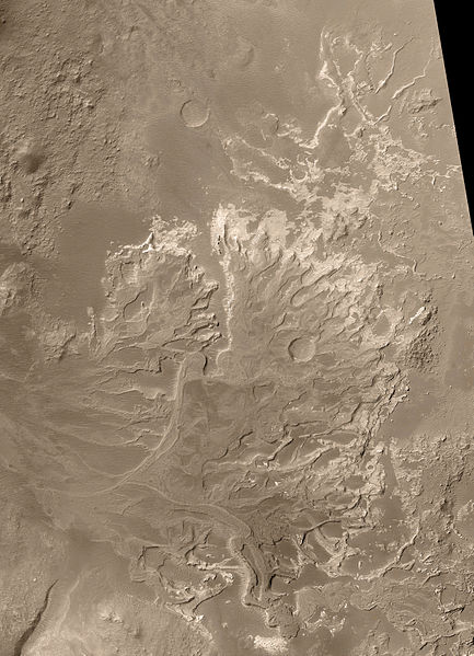 River Delta on Mars